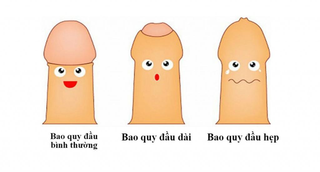nhan-biet-bao-quy-dau-dai-hep